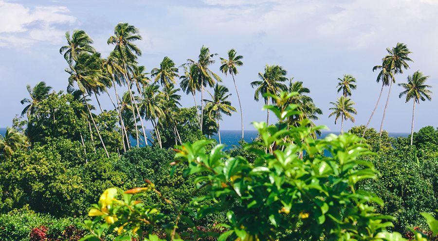 The Flip Side of Fiji