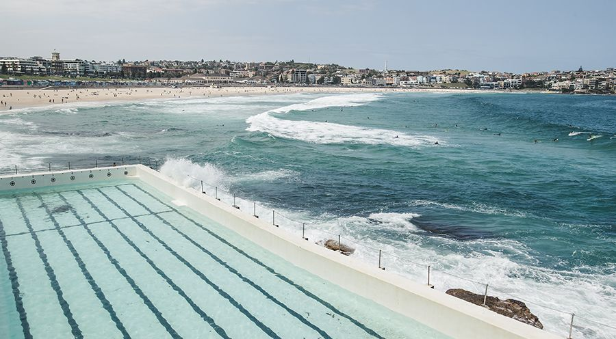We're The Neighbours: Bondi Beach, Sydney